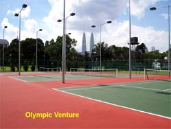 Repaired and resurfaced 3 tennis courts using Plexipave Tennis coating